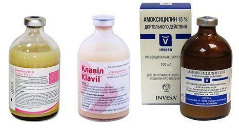 Клавил, Амоксицилин, Синулокс