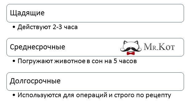 Седативные средства для кошек