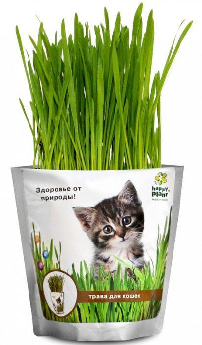 трава в пакете