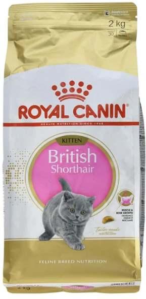 Роял Канин для британского котенка