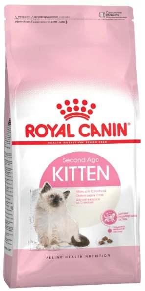 Роял Канин для персидских котят