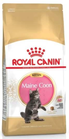 Корм для котят мейн-кунов