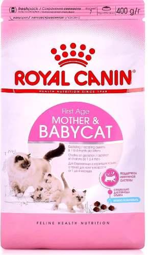 Корм для котенка и мамы
