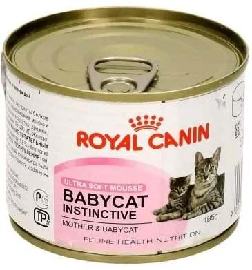 Мусс для маленьких котят