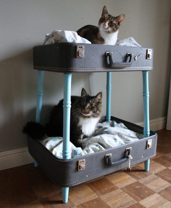 Из чемоданов