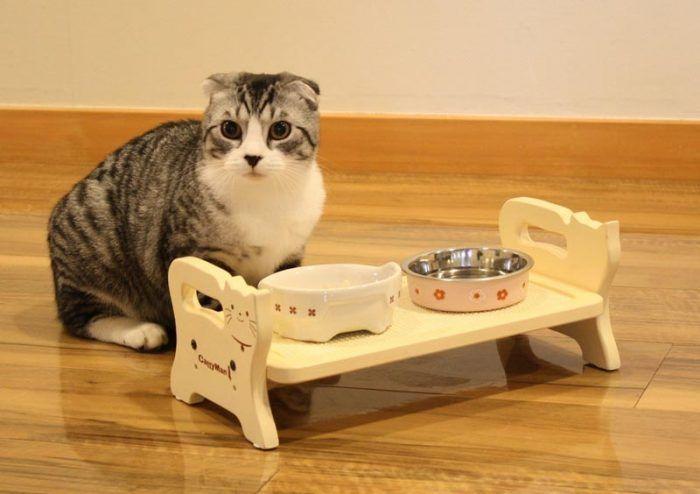 Корм для кошек холистик