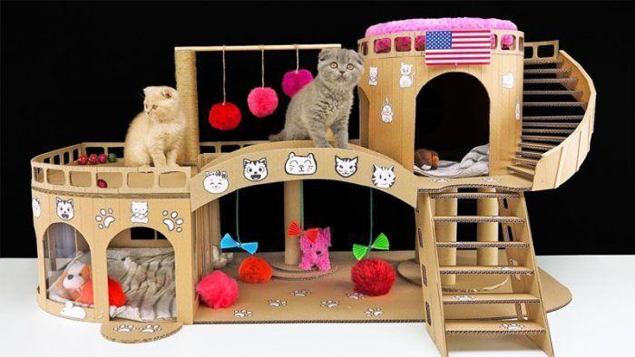 Игровой комплекс для котят