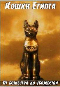 Кошки Египта. От божества до убожества