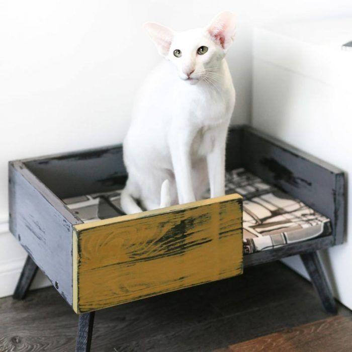 Лежанка для белой кошки