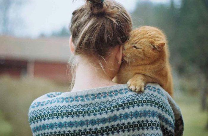 Кот любит хозяина