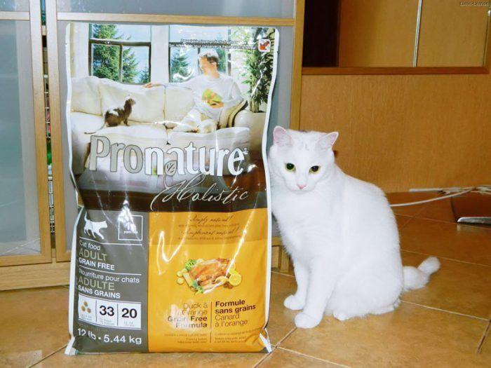 Пронатюр и кошка