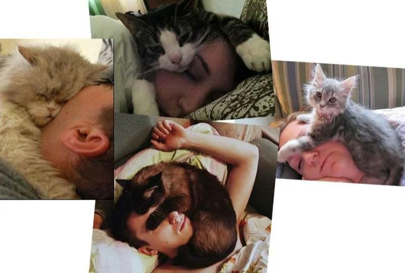 Спят на лице
