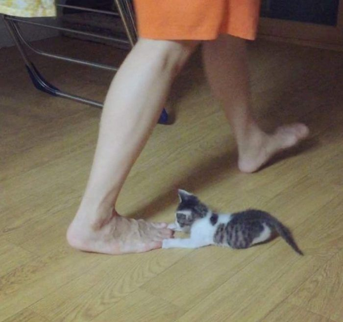 Играет с ногами