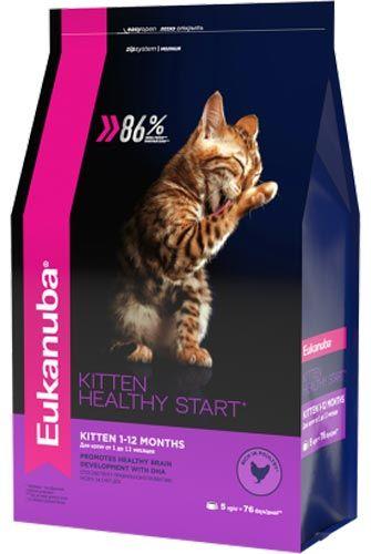 Kitten Healthy Start