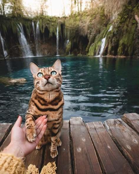 Цуки и водопады