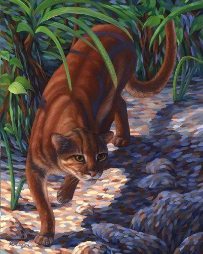 Нарисованная Калимантанская кошка
