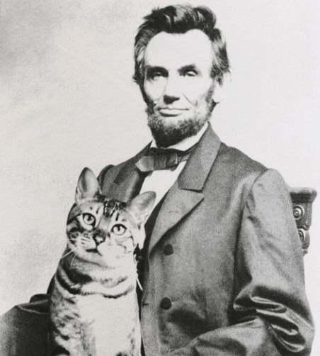 Линькольн с котом