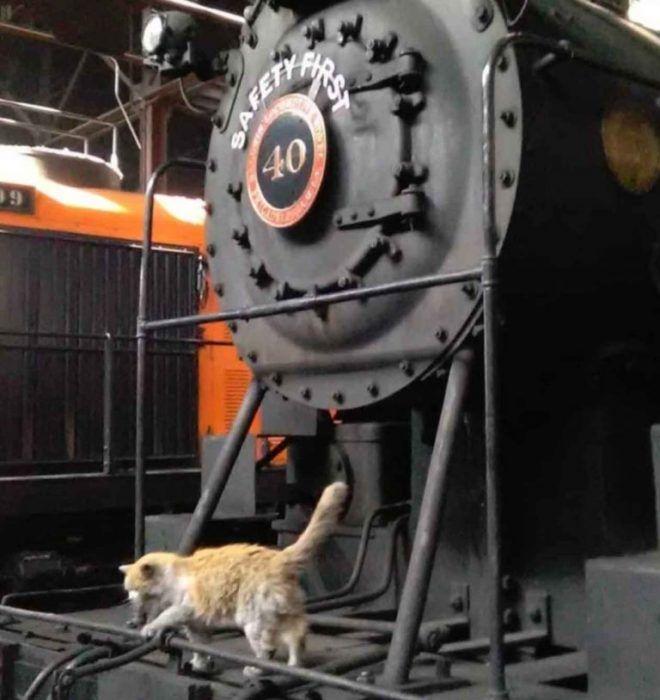 С поездом