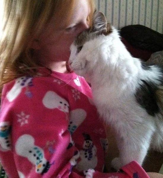 Девочка спасшая котика