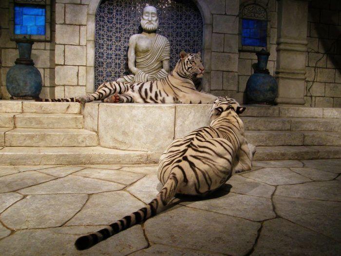 Тигры в замках