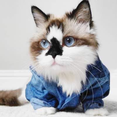 Рубашка под цвет глаз