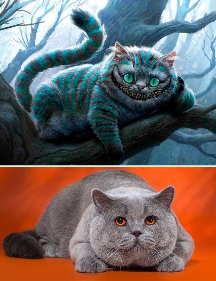 Чеширский кот и британец