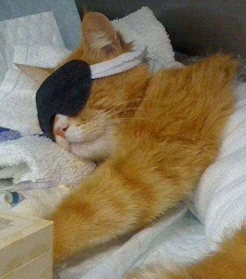 Отдых после операции