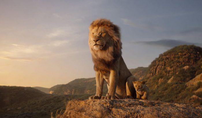 Лев в природе