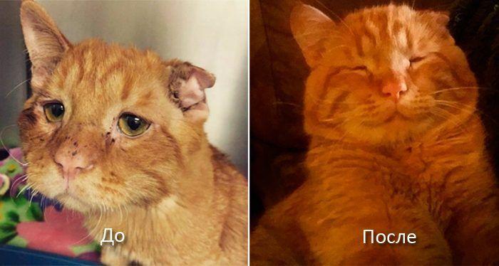 Бенбен до и после