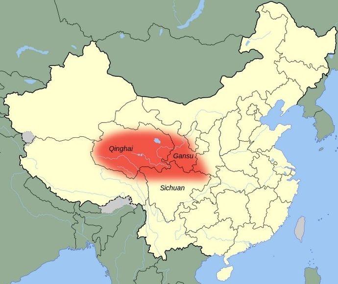 Место обитания китайской кошки