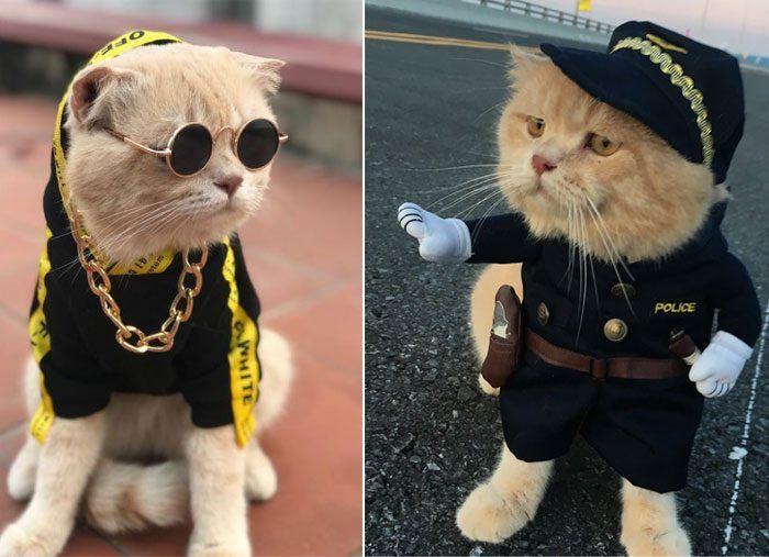 Хиппи и полицейский