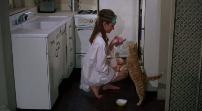 Котик и Одри