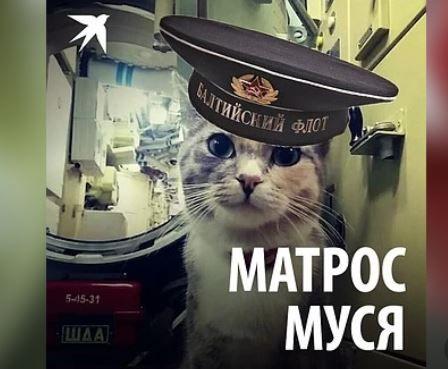 Матрос Муся