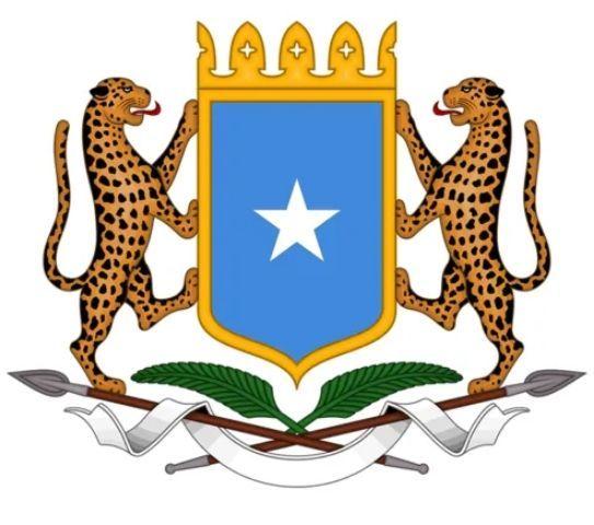 Леопард на Гербе Сомали