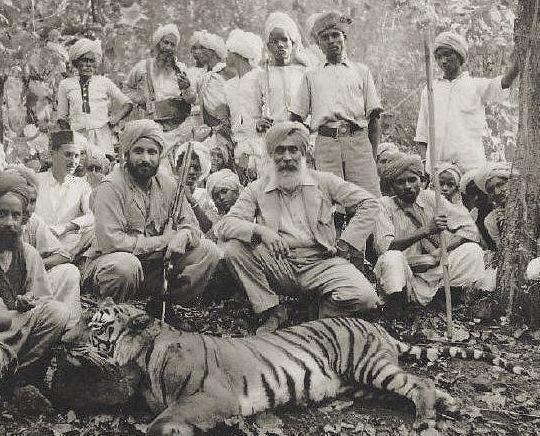 Чампаватская тигрица и люди