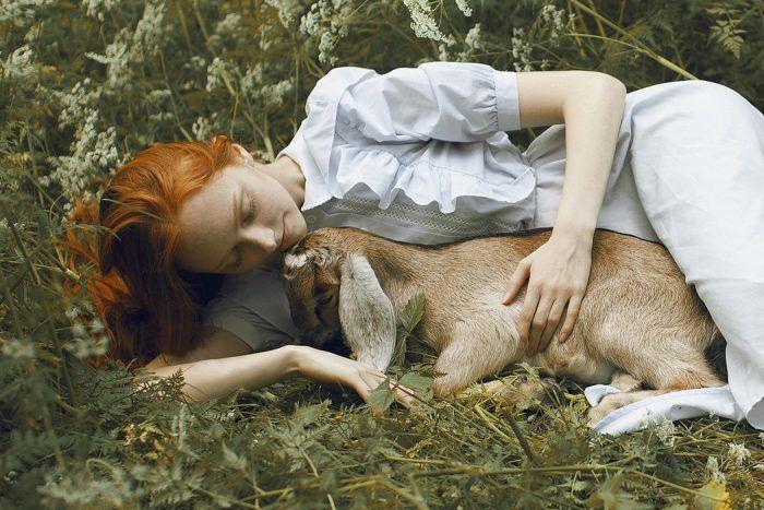 Животное и модель