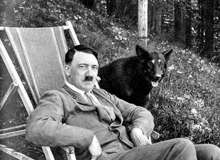 Вместе с собакой