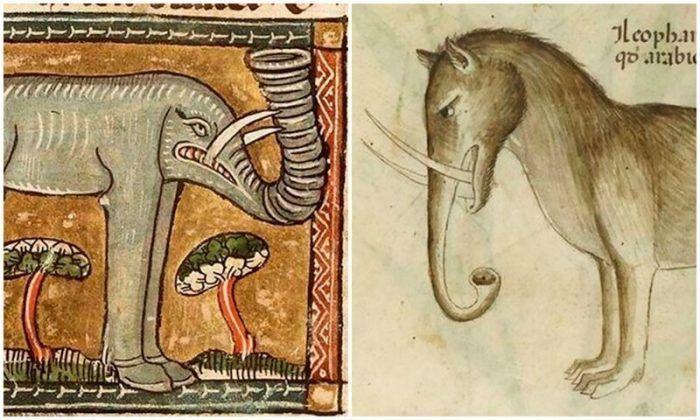 Примеры изображения слонов
