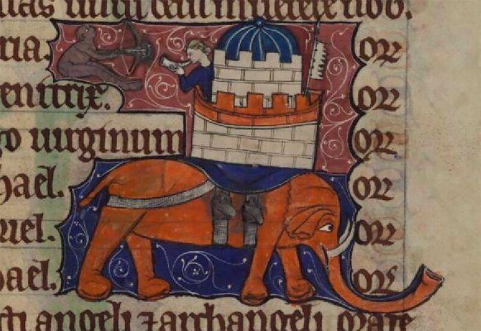 Изображение слона