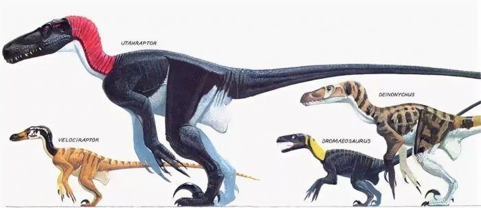 Сравнение динозавров