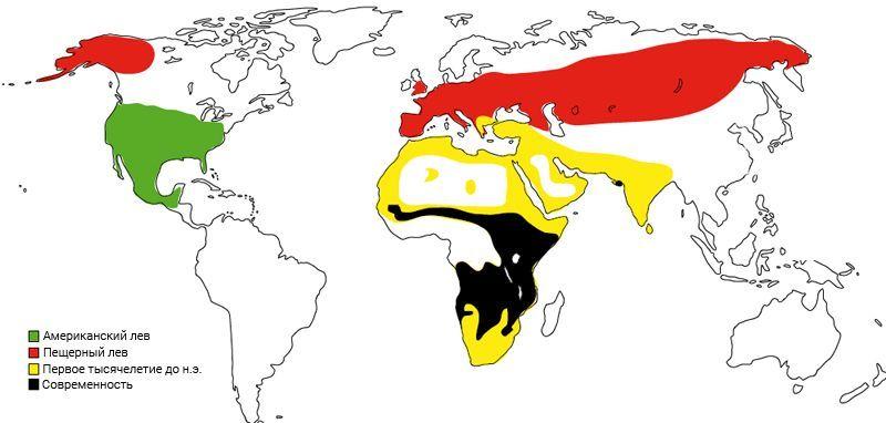 Карта распространения льва по миру
