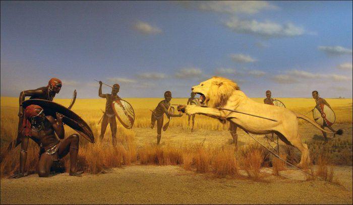 Охота на льва