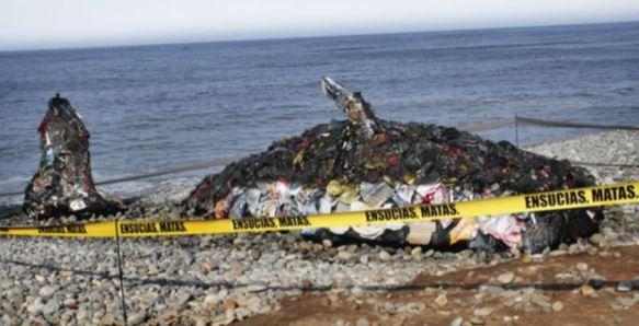 Умерший кит