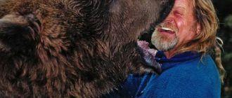 Благодарный медведь