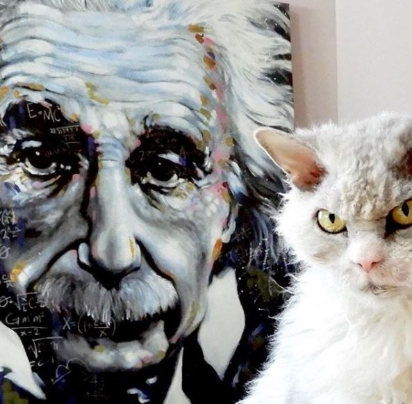 Тезка Эйнштейна