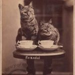 Вы будете чай