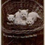 Малыши в корзинке